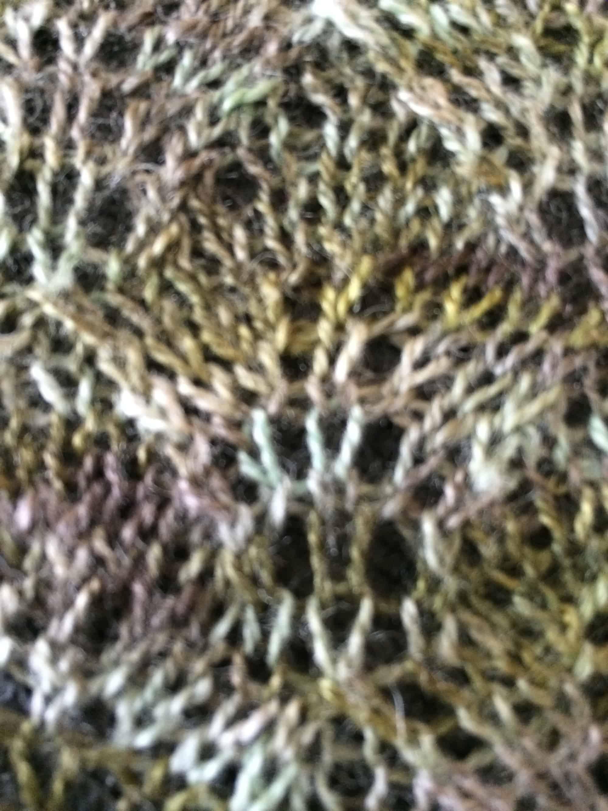 Birch Leaf Shawl Through The Yarny Curtain