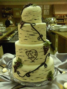 My friends Hope and Jacob got married the day we graduated from law school.  I made their wedding cake and officiated at their wedding.